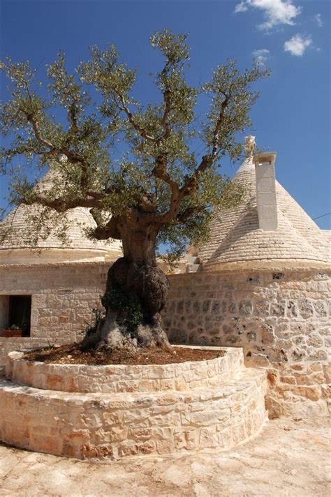 cottage italia 131 best trulli thatched roofs images on