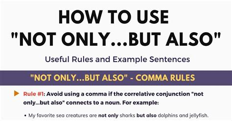 Not Only But Also: Important Rules and Example Sentences ...