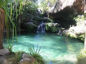 Piscine Avec Cascade : am nagement piscine naturelle avec cascade ~ Premium-room.com Idées de Décoration