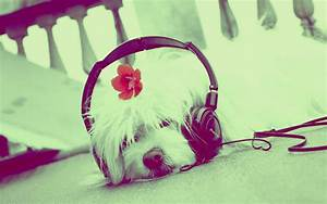 cute music wallpaper | Wallpaper sportstle