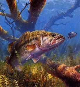 N Y C Reservoir Fishing  Fishing Art By Sussino
