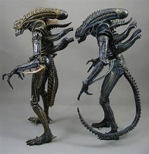 Image Gallery neca aliens xenomorph warrior
