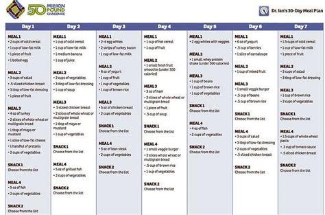 renal diet menu samples dr ians  day meal plan