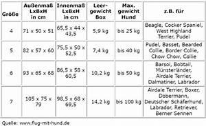 Idealgewicht Hund Berechnen : gewicht hund berechnen gesunde ern hrung lebensmittel ~ Themetempest.com Abrechnung