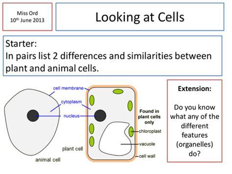 cheek cells practical  danielle teaching