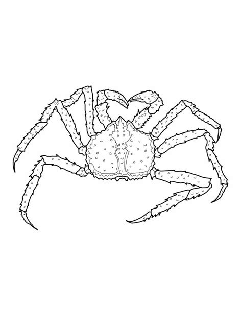 Coloring Drawing by Free Printable Crab Coloring Pages For