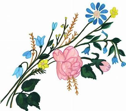 Painted Flower Flowers Ornament Transparent Paint Vol
