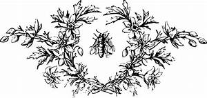 Vintage Bee Hive Clipart - Clipart Suggest