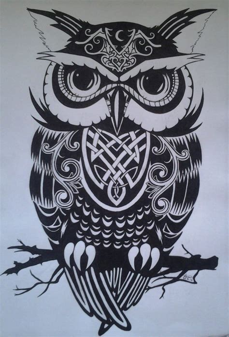 celtic owl tattoo sketches images  pinterest