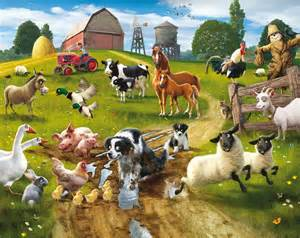fototapete kinderzimmer farm animals wallpapers wallpaper cave