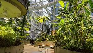 Büro Pflanzen Pflegeleicht : gr nes b ro welche vorteile pflanzen im office bringen ~ Michelbontemps.com Haus und Dekorationen