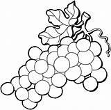 Grape Coloring Clipart Clipartbest Super Grapes Pages sketch template