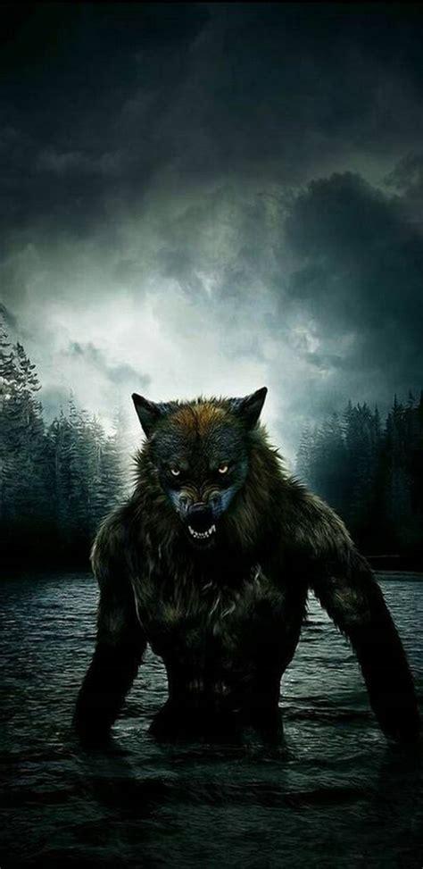 werewolf wallpaper  puggaard    zedge