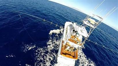Fishing Offshore Sport Luxury Hawaii Private