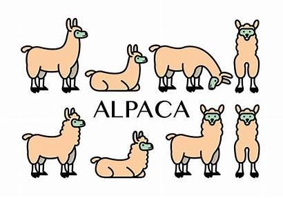 Alpaca Vector Icons Clipart Graphics Edit