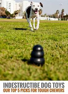 Indestructible dog toys our 6 favorite tough dog toys for Really tough dog toys