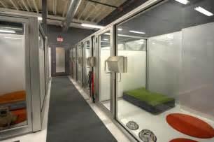 Dog Boarding Facility Designs