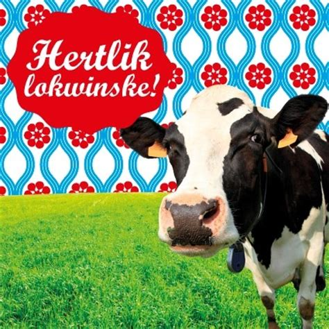 Wenskaart koe Hertlik Lokwinske - friese-producten.nl