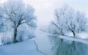 Winter beautiful rime scenery wallpaper 7 - Landscape ...