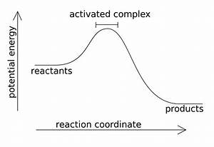 Which Is A More Favorable Reaction  An Endothermic Or An