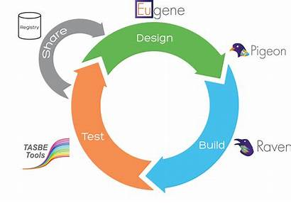 Tools Igem Chimera Build Graphic Workflow Software