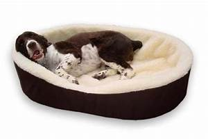 the best dog beds for labs and large dogs in 2017 reviewed With no rip dog bed