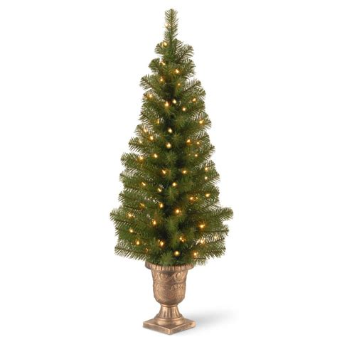 national tree company 4 ft montclair spruce entrance