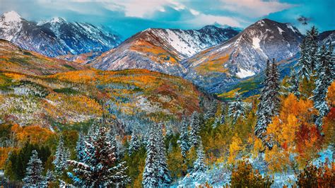 autumn color snow mountain forest  red  yellow