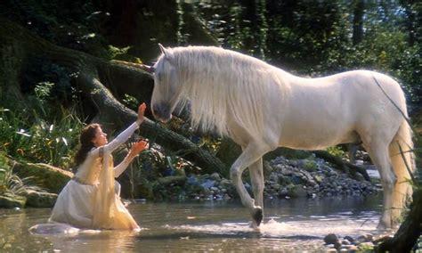 legends   unicorn white horse girl  horse unicorn