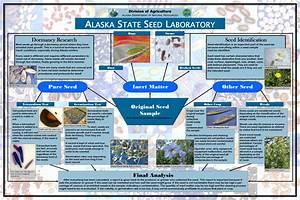 Alaska Plant Materials Center