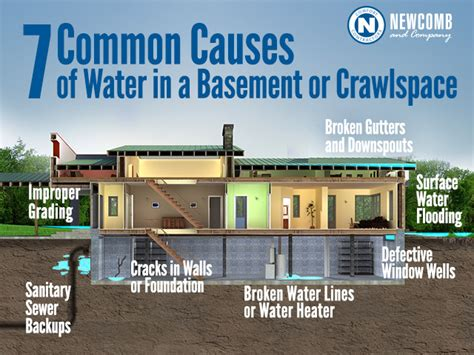 7 Common Causes Of Water In A Basement  Newcomb & Company