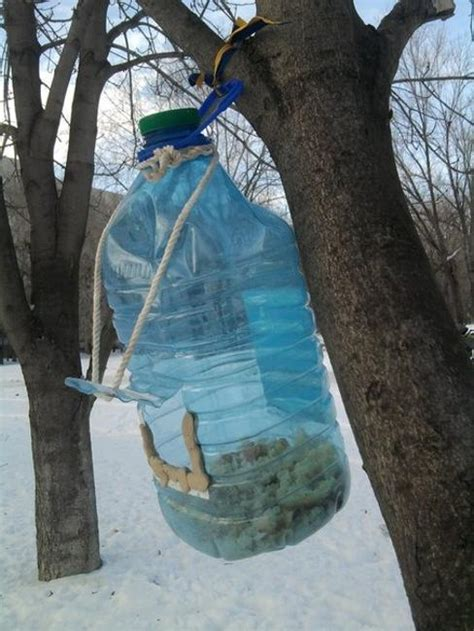recycle plastic bottles  bird feeders creative