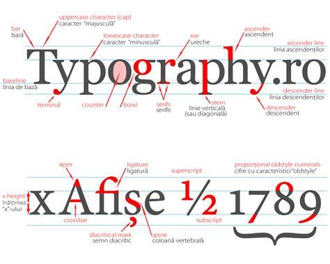 type anatomy research lorenashleigh