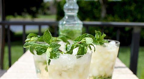 bathtub gin fizz recipe photos by monika gin fizz