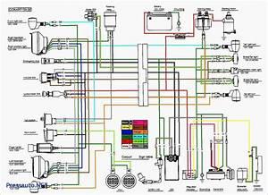 Wiring Diagram For 110cc 4 Wheeler Fresh 110 Atv Wiring Help Atv In 2020