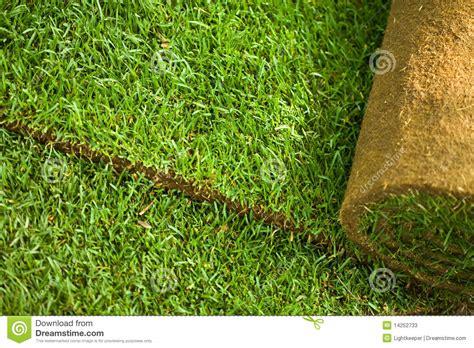 Turf Grass Sheet On Football Field Royalty-free Stock