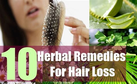 10 Herbal Remedies For Hair Loss  Herbal Treatment For