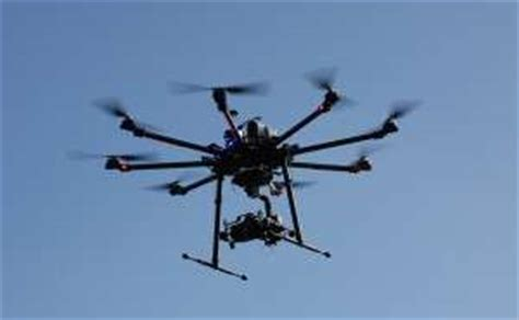 study quantifies the impact that drones can on bird
