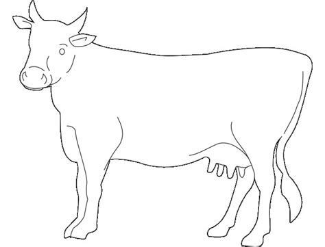 cow template cow template animal templates free premium templates
