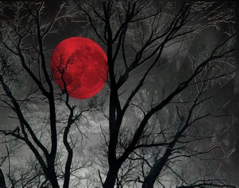black white red decor tree moon wall art red moon pop