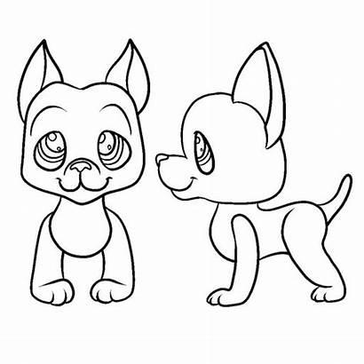 Dane Template Lps Cat Shorthair Paint Dachshund