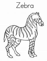 Zebra Coloring Strong Stripes Outline Printable Zebras Animal Template Realistic Getcolorings Colornimbus Clipart Preschool sketch template