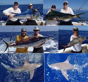 kona hawaii fishing report feb wrap up bloodydecks