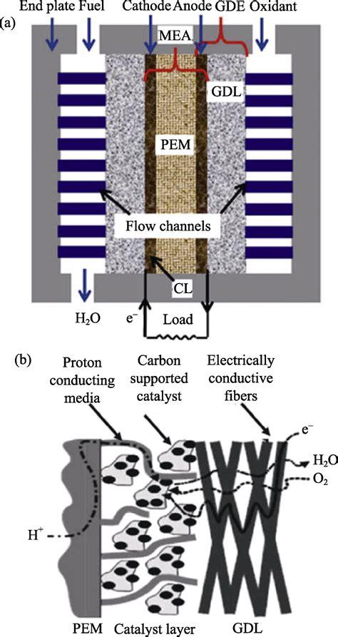 research progress  advanced carbon materials  pt support  proton exchange membrane fuel cells