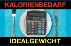 Kalorienbedarf Stillzeit Berechnen : kalorienbedarf ausrechnen und idealgewicht berechnen ~ Themetempest.com Abrechnung