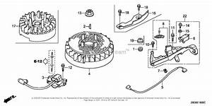 Honda Gcv 190 Engine Parts Diagram