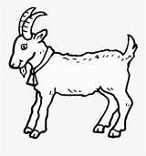 Goat Boer Kleurplaat Geit Clipartkey Theheretic Anglo Webstockreview Nubian Netclipart sketch template