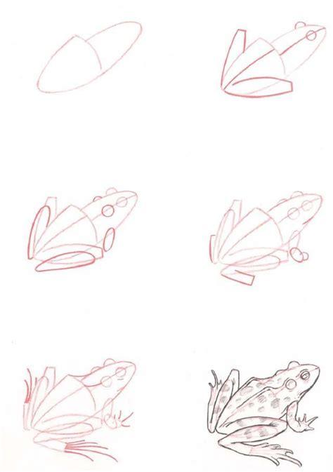 die besten  frosch zeichnen ideen auf pinterest