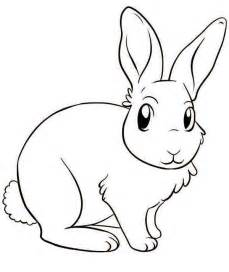 Bunny Drawing Coloring Pages
