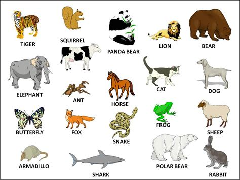 Funny English: Learning the name of the animals